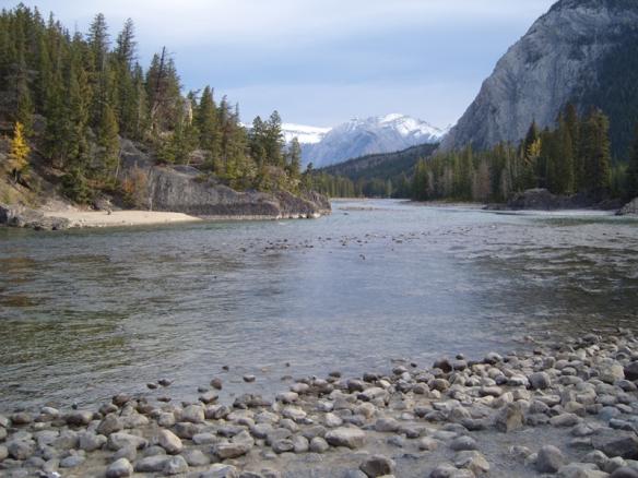 Photo credit: Annie Zalezsak, near Bow Falls, Banff
